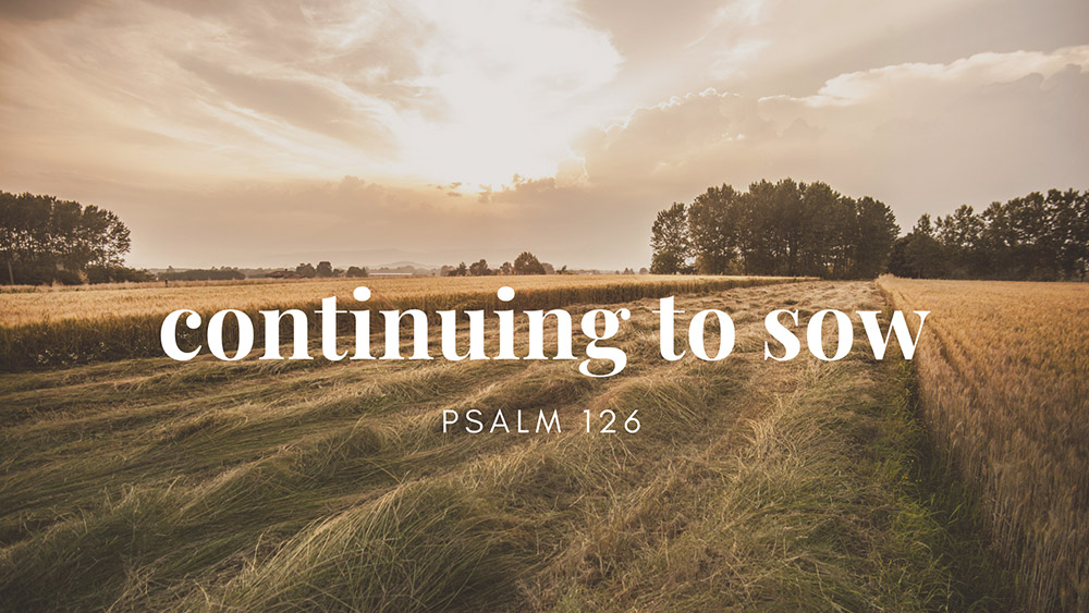 Sowing Seeds of the Kingdom