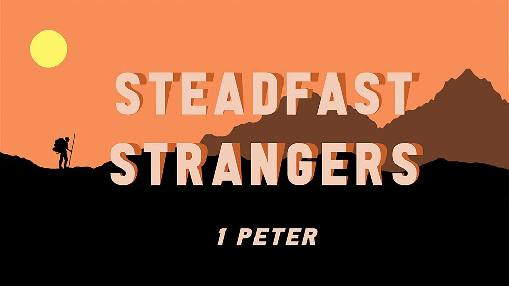 Steadfast Strangers